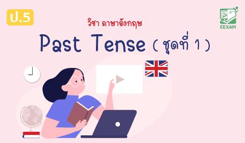 แนวข้อสอบภาษาอังกฤษ ป.5 เรื่อง Past Tense ชุดที่ 1