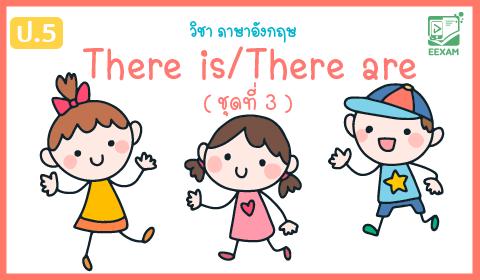 แนวข้อสอบภาษาอังกฤษ ป.5 เรื่อง There is/There are ชุดที่ 3