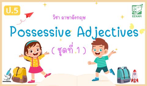 แนวข้อสอบภาษาอังกฤษ ป.5 เรื่อง Possessive Adjectives ชุดที่ 1