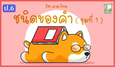 แนวข้อสอบภาษาไทย ป.6 เรื่องชนิดของคำ ชุดที่ 1
