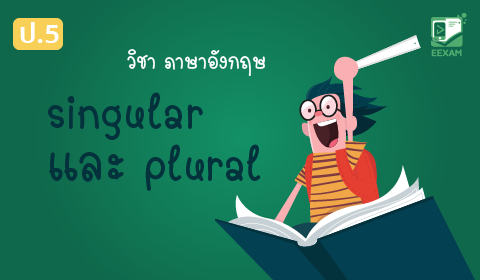 แนวข้อสอบภาษาอังกฤษ ป.5 เรื่อง singular/plural ชุดที่ 1