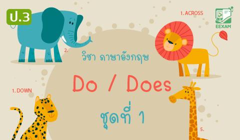 แนวข้อสอบภาษาอังกฤษ ป.3 เรื่อง Do / Does ชุดที่ 1