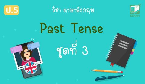 แนวข้อสอบภาษาอังกฤษ ป.5 เรื่อง Past Tense ชุดที่ 3