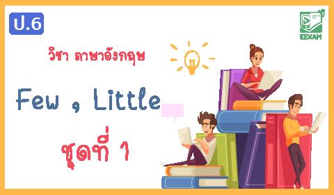 แนวข้อสอบภาษาอังกฤษ ป.6 เรื่อง Few,Little ชุดที่ 1